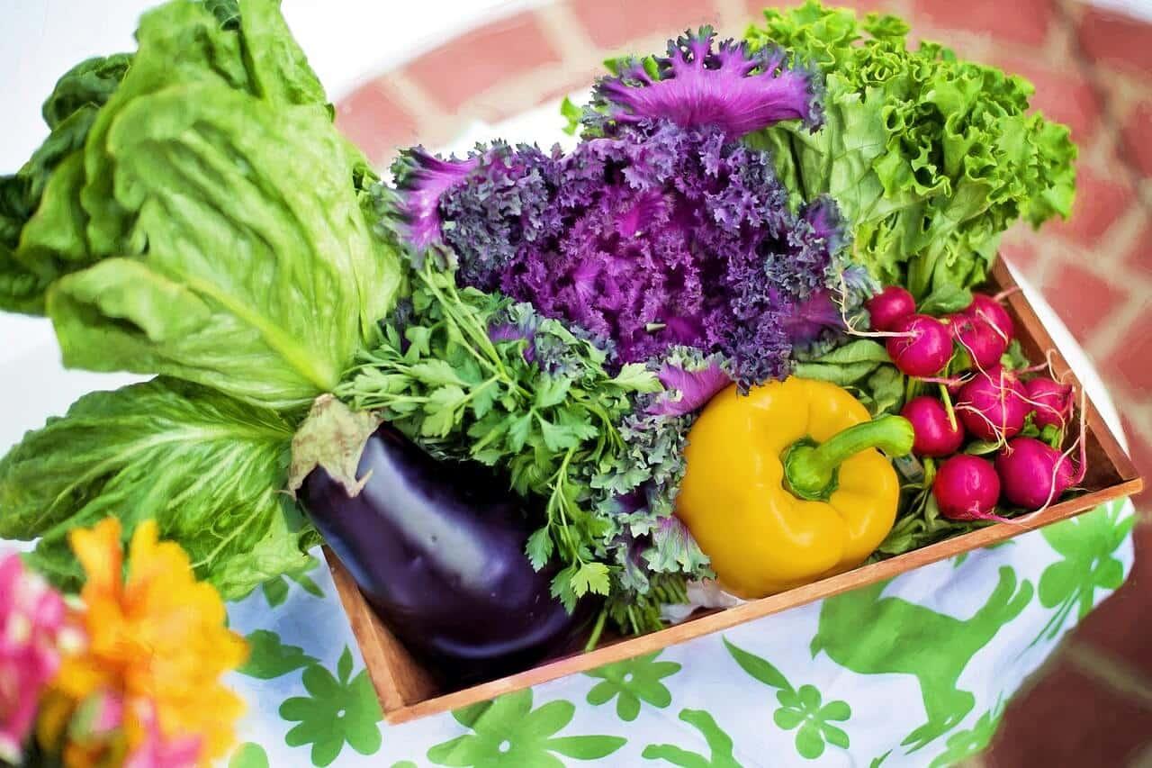 Cómo funciona un generador de ozono para la desinfección de frutas y verduras